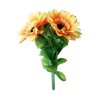 Amazing Split Sunflower by Premium Magic Trick