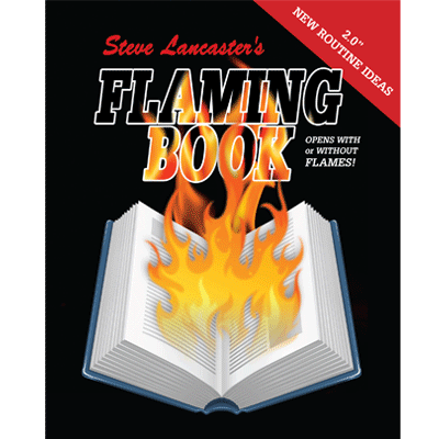 Electronic Flaming Book